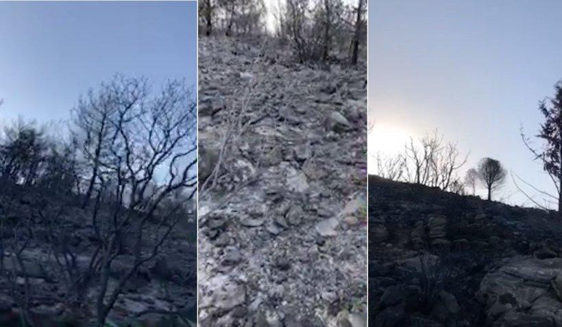 Imagini apocaliptice după incendiile masive la Bodrum, în Turcia, unde turiștii au fost evacuați de Garda de Coastă