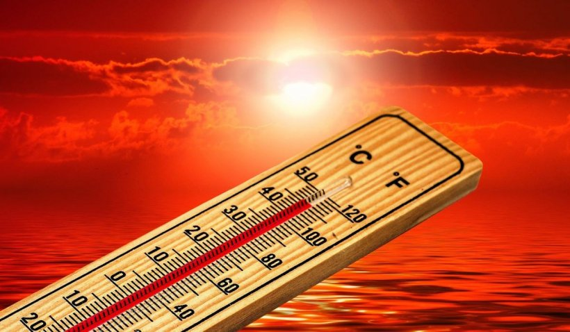 Capitala fierbe la 42 grade Celsius. Reţeaua electrică a cedat din cauza caniculei