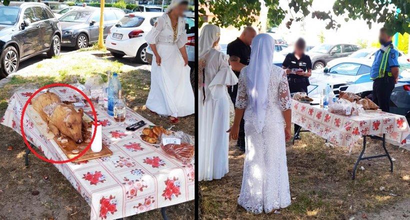 Romii aflați în vacanță la Mamaia au pus de-o petrecere cu purcel la proțap în fața hotelului