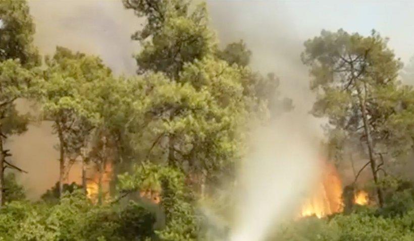 Incendii devastatoare în 6 provincii din Turcia: 8 persoane au murit și sute de case au fost distruse