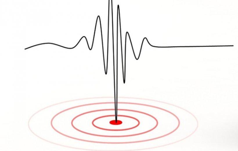 Un cutremur de 4,2 grade a avut loc miercuri, la Braşov