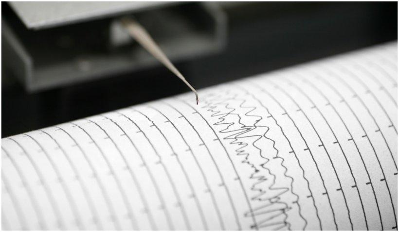 Cutremur puternic în Filipine. A fost lansată alerta de tsunami