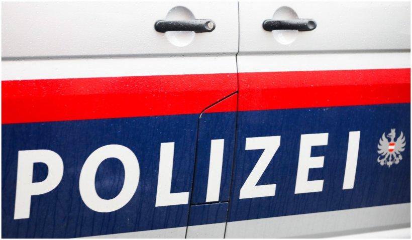 Un român din Austria a sugrumat-o pe fiica partenerei sale, apoi a încercat să o arunce pe fereastră