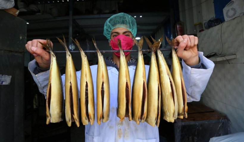 Peştele sintetic, obţinut din culturi celulare, va ajunge pe mesele europenilor