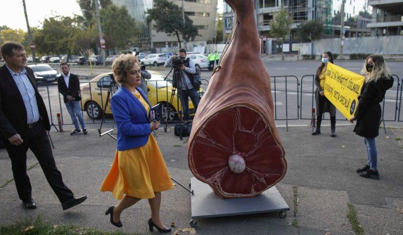 Congres PNL septembrie 2021. Protest al comunității Declic, cu un ciolan de doi metri