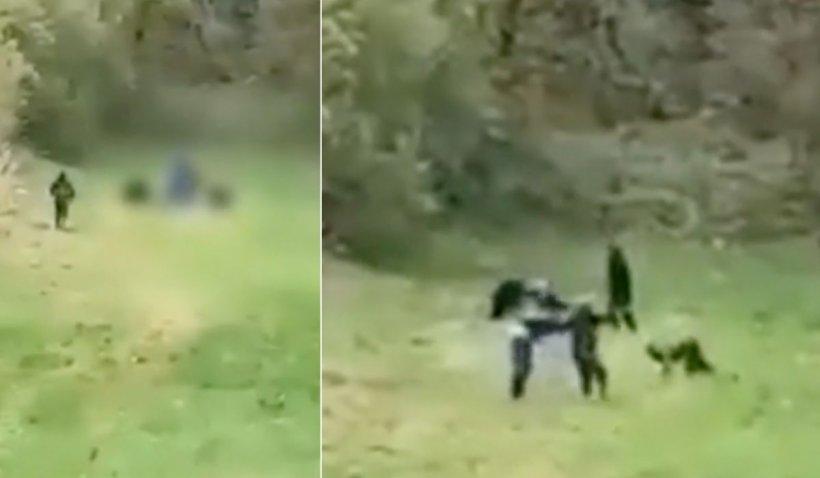 Pui de urs ucis cu furci și topoare de sătenii unei localități din Vrancea, după ce a atacat trei oameni