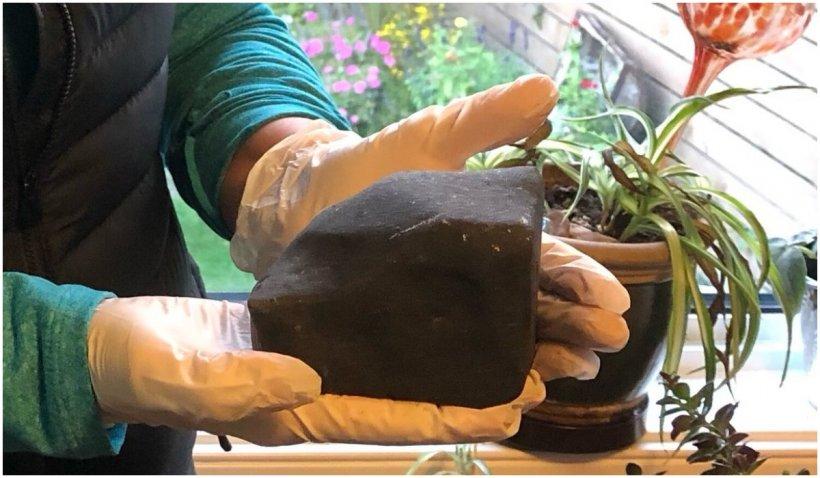 O femeie din British Columbia s-a trezit cu un meteorit în pat, după ce acesta a căzut prin tavan