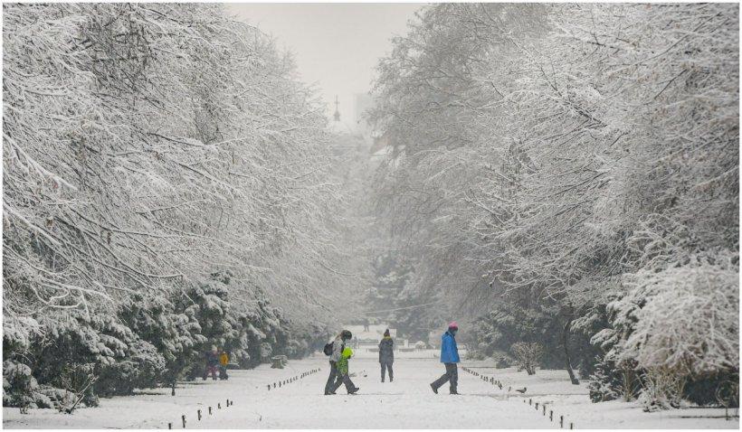 Prognoza meteo pentru iarna 2021 - 2022. Când încep ninsorile în România