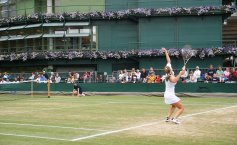 ALEXANDRA DULGHERU - VENUS WILLIAMS LIVE la WIMBLEDON. ONLINE STREAM Eurosport - VIDEO