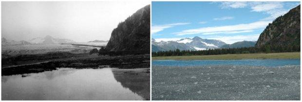 Gheţarul Ursului, Alaska. Iulie, 1909 — August, 2005