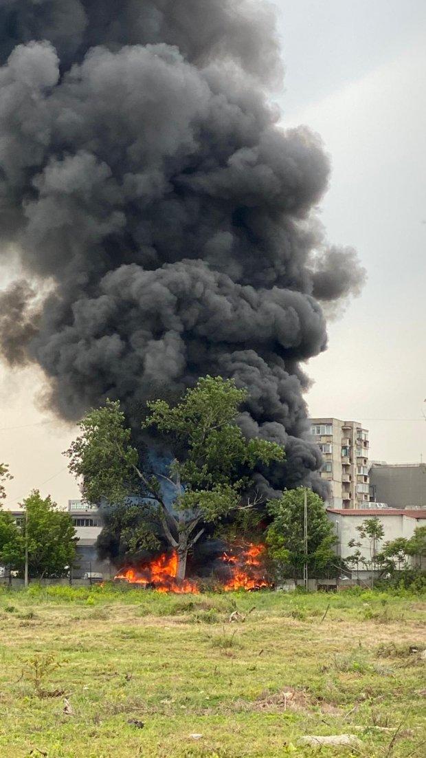 Incendiu puternic în zona Trafic Greu din București