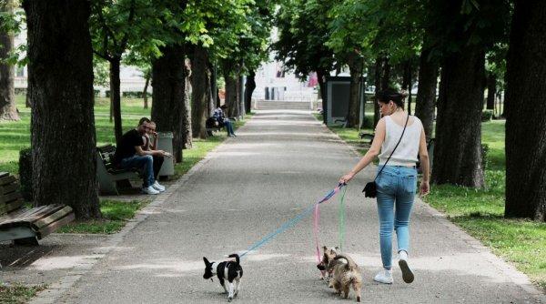 Veste bună pentru iubitorii de animale! Anunţul făcut de Neculai Onţanu