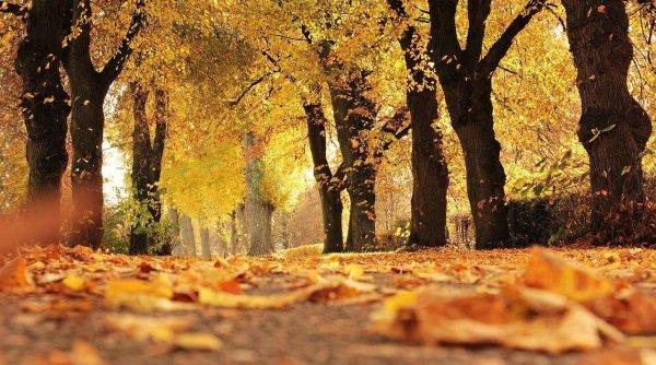 Cum va fi vremea în luna octombrie. ANM a publicat prognoza: Nu este normal pentru mijlocul toamnei