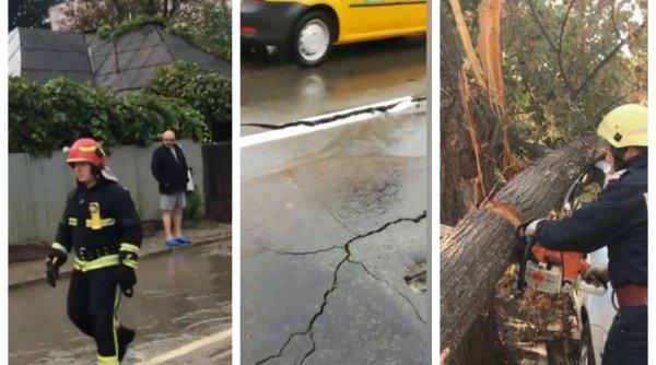 Ploile și furtunile au devastat mai multe zone din țară. Copaci doborâţi, drumuri surpate, localităţi fără curent electric