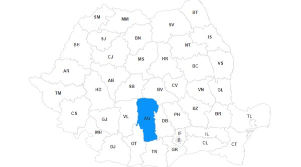 Lista primarilor din judeţul Argeş, primele rezultate la alegerile locale 2020