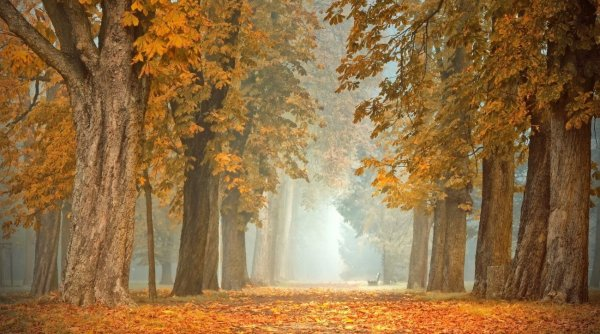 Se anunţă nopţi friguroase în România! Meteorologii anunţă schimbări importante