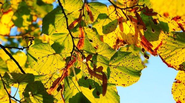 Val de aer cald peste România! Prognoza METEO 20 octombrie 2020