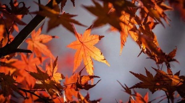 Temperaturi anormale pentru mijlocul lui octombrie. Prognoză METEO 21 octombrie 2020