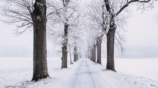 Cum va fi vremea în această iarnă. Cea mai nouă prognoză!