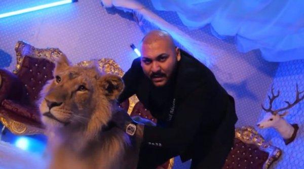 Percheziţii la manelistul Dani Mocanu. Poliţiştii caută leul rănit folosit într-un videoclip