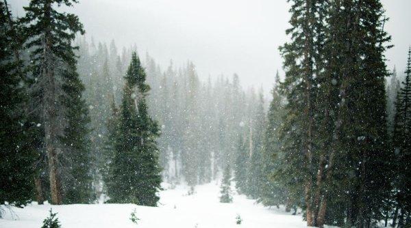 Vremea în minivacanța de 1 decembrie. Meteorologii au făcut anunțul în urmă cu scurt timp