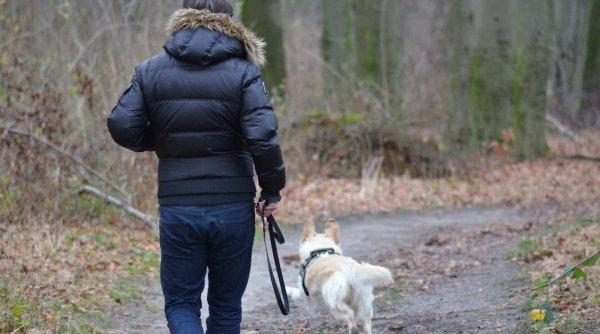 Amenda primită de un hunedorean prins că își plimba câinele, deși trebuia să stea în carantină