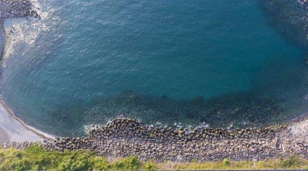 Flora şi fauna din Marea Neagră, ameninţate de o substanță vâscoasă