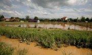 Cod portocaliu de inundatii �n judetul Alba