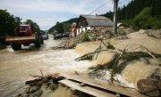 """Sub blestemul apelor. Hidrologii le-au dat cea mai proasta veste: """"P�r�urile s-ar putea transforma �n TORENŢI"""""""