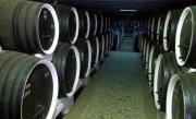 Productia de vin a Rom�niei a scazut �n acest an cu 20%. Ce loc ocupam la nivel mondial