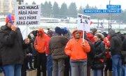 Patronatele din industria alimentara ameninta cu greva fiscala din cauza TVA la carne