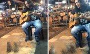 Cânta pe stradă, la chitara lui, când patru pisicuțe s-au apropiat de el. Nimeni nu se aștepta la ceea ce a urmat