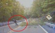Încerca să mute o creangă de pe șosea, când un copac uriaș s-a prăbușit în direcția lui. Ce a urmat i-a schimbat viața
