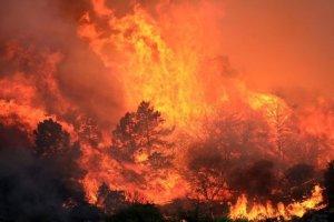 Incendiu masiv de vegetaţie în California. 5.000 de hectare, distruse în trei zile. Focul a scăpat de sub control