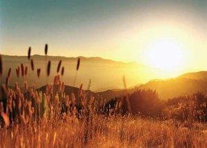 Septembrie 2014, cea mai caldă lună septembrie înregistrată pe Pământ din 1880 şi până acum