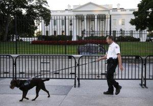 Încă un bărbat a vrut să intre în Casa Albă. Câinii l-au pus la pământ