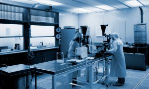 """Realizare revoluţionară în medicină. Ce au reuşit să creeze  cercetătorii japonezi: """"Am pornit de la o singură celulă"""""""