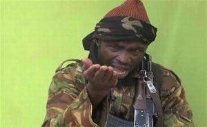 """""""Este necesar un mare efort internaţional şi multinaţional """". Statele Unite trebuie să ajute Nigeria în combaterea organizaţiei teroriste Boko Haram"""