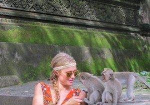 Wow! Ce prieteni potriviţi şi-a găsit Paris Hilton!