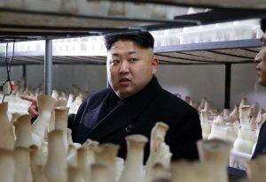 Tensiuni diplomatice între Coreea de Nord şi SUA: Nu vom sta cu braţele încrucişate în faţa câinilor turbaţi