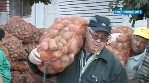 Pentru Udrea 900.000 euro, pentru săraci cartofi