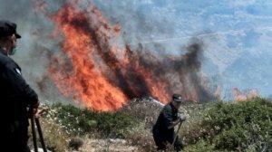 Mii de persoane evacuate în sudul Franţei, din cauza incendiilor de vegetatie