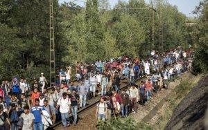 Ungaria va trimite autobuze care să-i ducă pe imigranţi la frontiera cu Austria