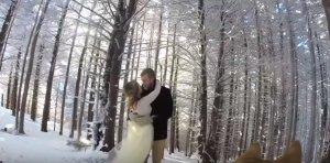 Un cuplu și-a angajat câinele să le filmeze nunta. VIDEO
