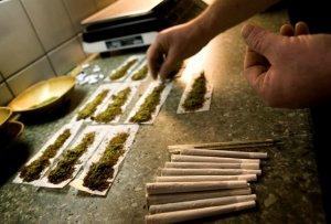 Trei persoane au fost arestate preventiv și 15 kilograme de cannabis, ridicate de polițiști
