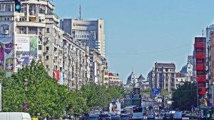 Oraşul din România unde primăria plăteşte 310 lei pe o crizantemă sau 2.800 de lei pe un coş de gunoi