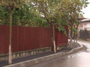 Dorel lovește din nou! A asfaltat trotuarul cu tot cu copaci