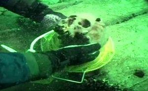Au găsit un pachet vechi de sute de ani pe un vas de război eșuat. Când l-au deschis, au înlemnit