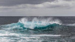 Un cunoscut înotător a murit în timp ce traversa Canalul Mânecii
