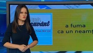 Pe cuvânt cu Ana Iorga: Neamțul în expresiile românești